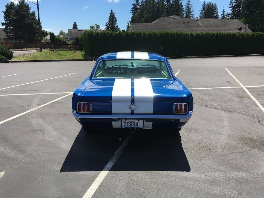 Used 1965 Ford Mustang GT350 TRIBUTE-WHAT A CAR- SEE VIDEO | Mundelein, IL