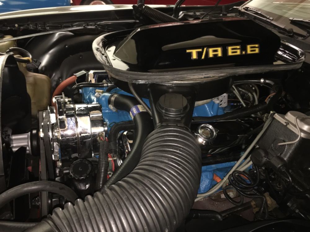 Used 1977 Pontiac Trans Am -M 21 FOUR SPEED-REAL WS4 CODE-BLACK ON BLACK-T/A-NEW LOW PRICE- | Mundelein, IL