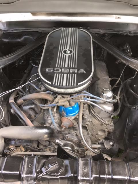 Used 1968 Ford Mustang -ELEANOR CLONE- SEE VIDEO | Mundelein, IL
