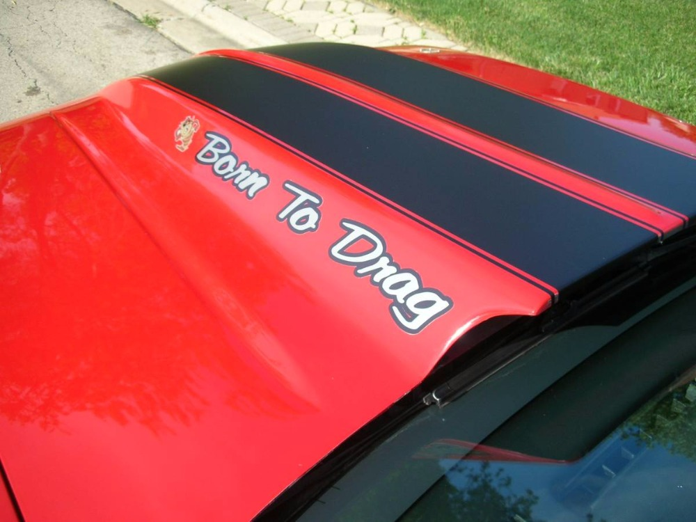 Used 1988 Chevrolet Camaro -IROC Z28- FUEL INJECTED 5.7 L V8 - CONVERTIBLE   Mundelein, IL