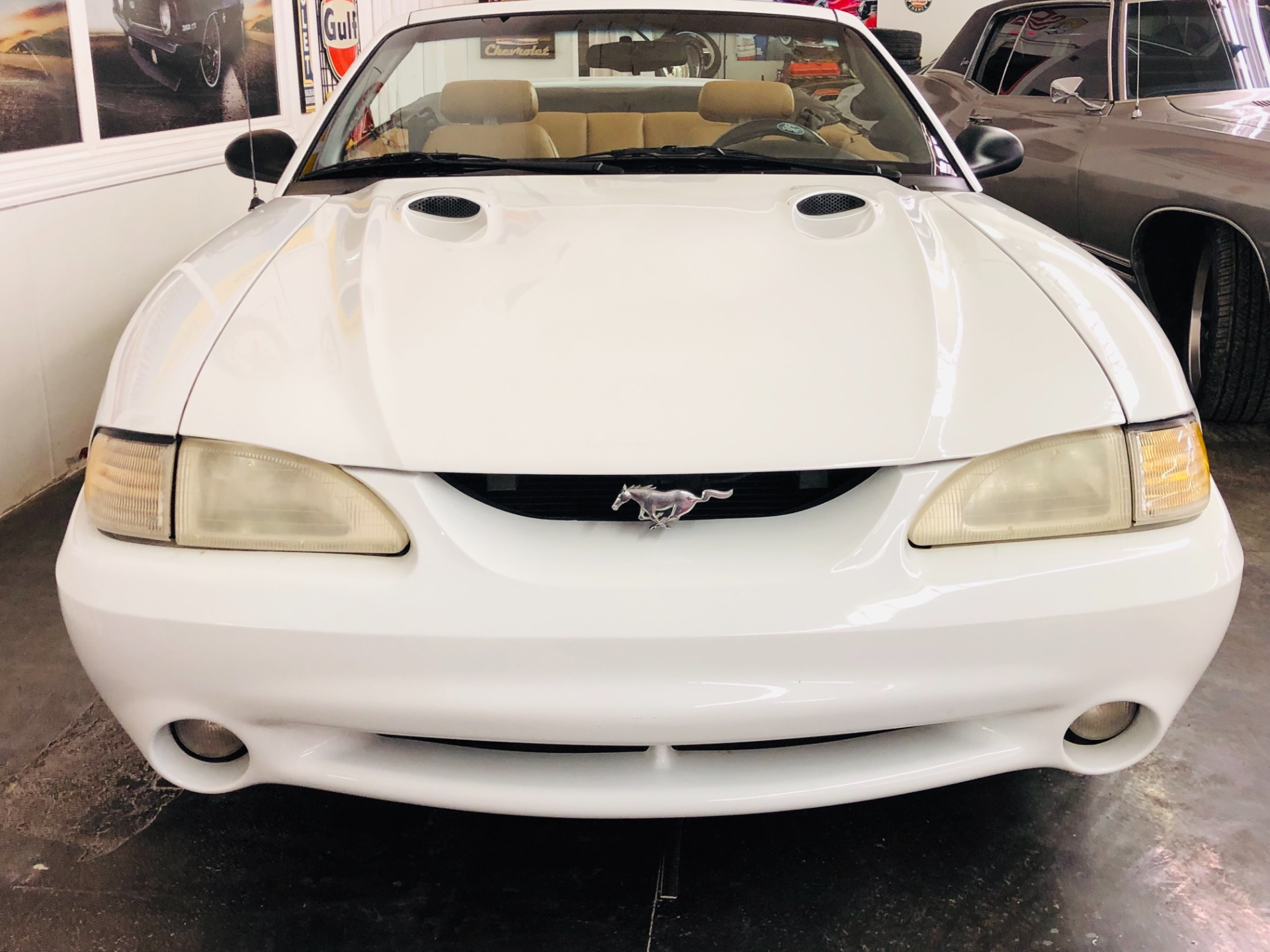 Used 1998 Ford Mustang -COBRA-CONVERTIBLE FROM ARIZONA-VIDEO | Mundelein, IL