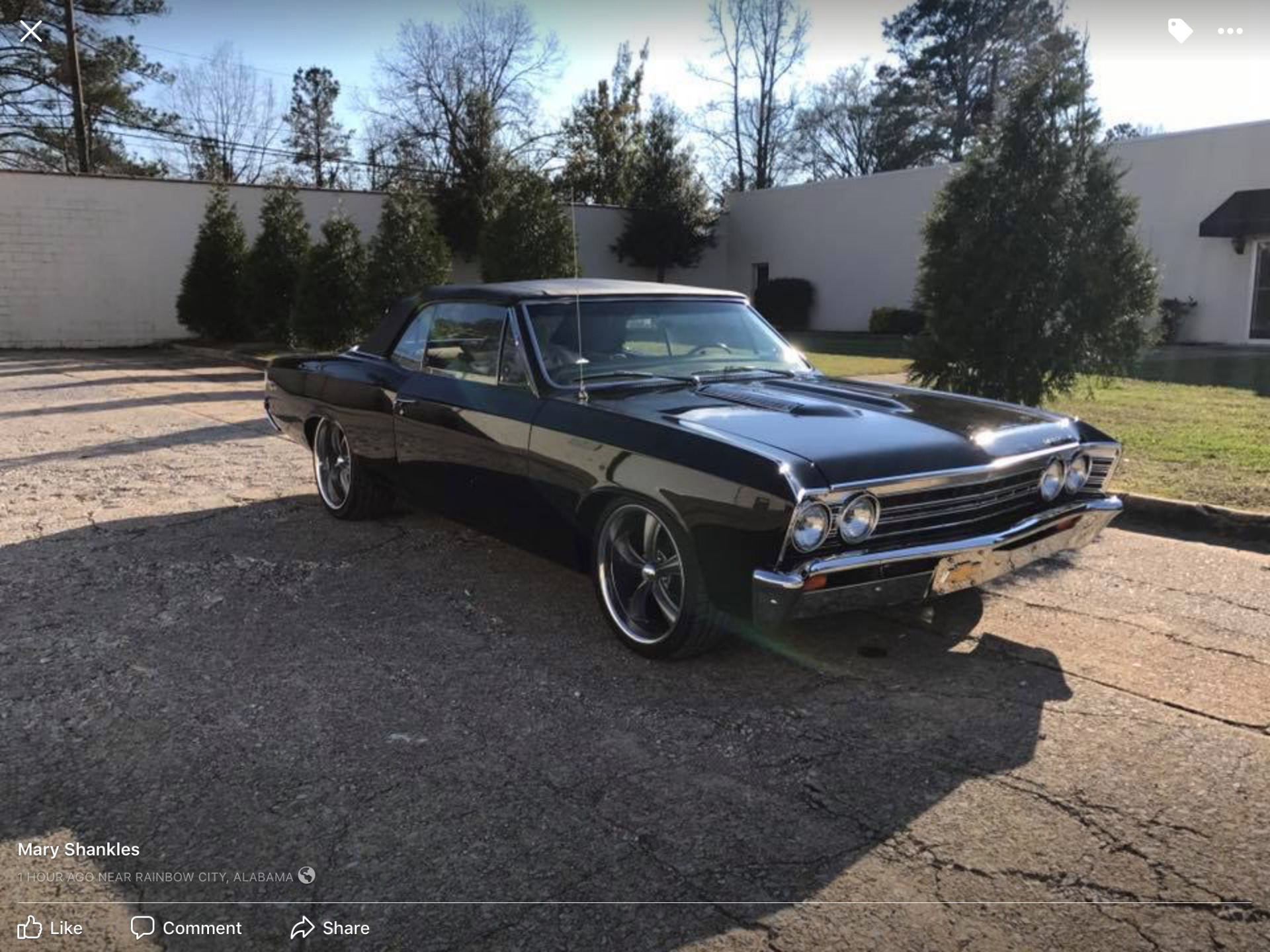 Used 1967 Chevrolet Chevelle -RESTORED-PRO TOUR-4 WHEEL DISC-700R4-454 ENGINE- | Mundelein, IL