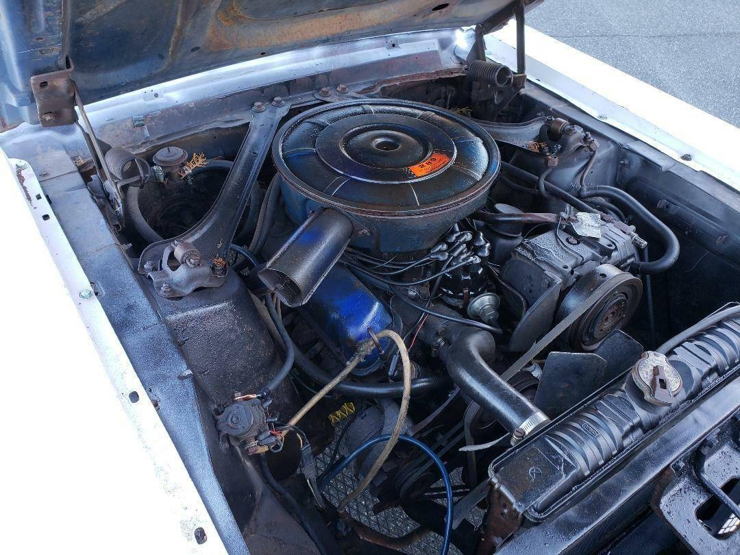 Used 1967 Ford Mustang -AWESOME SUMMER FUN-DRIVER QUALITY 289 ENGINE- | Mundelein, IL