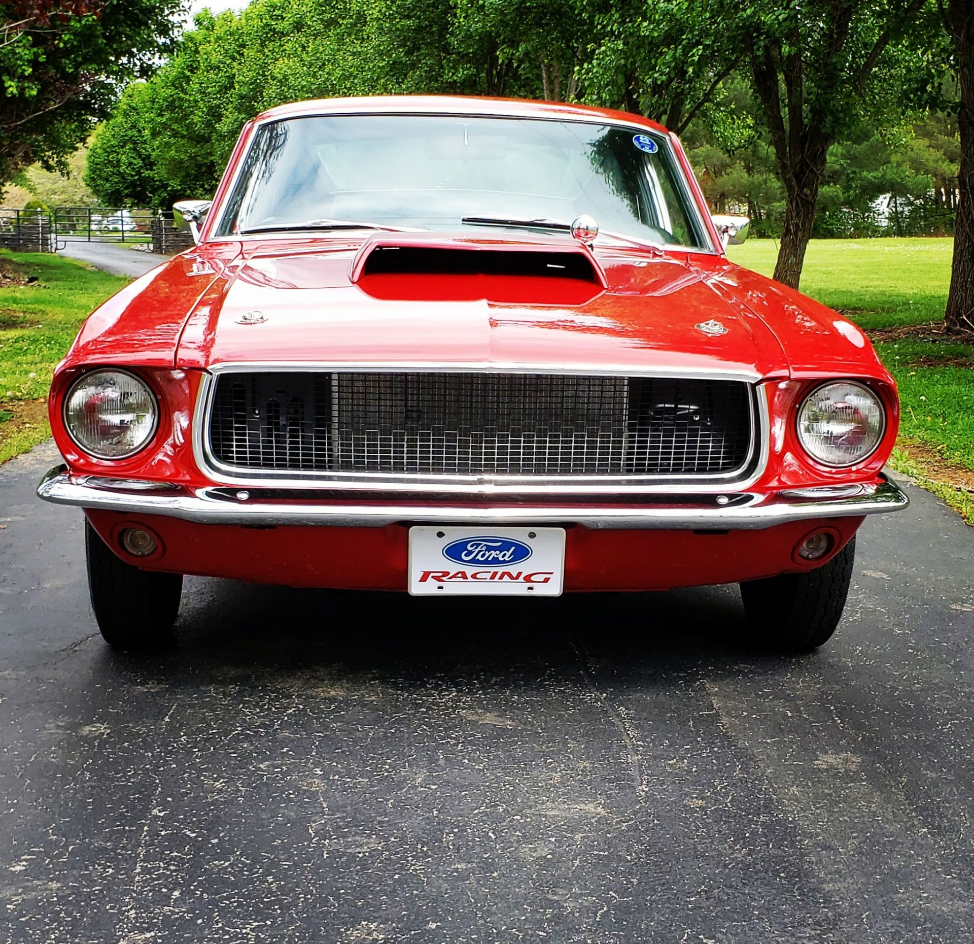 Ford Mustang 1967 For Sale: 1967 Ford Mustang -FASTBACK-4 SPEED-RESTORED-BUILT MUSCLE