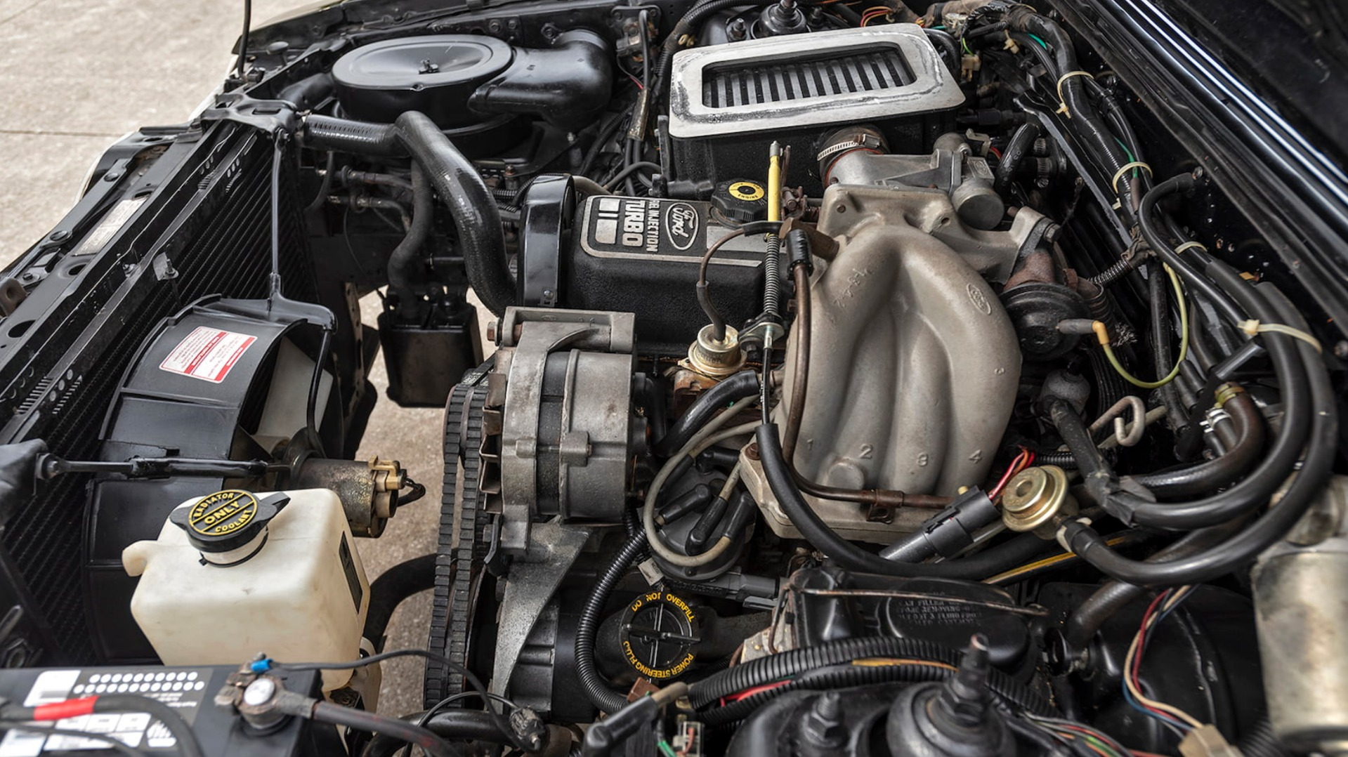 Used 1984 Ford Mustang -SVO-FACTORY TURBO ENGINE-RARE CLASSIC-SEE VIDEO   Mundelein, IL