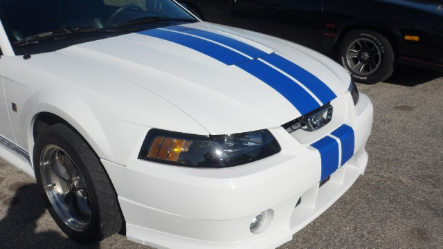 Used 2002 Ford Mustang ROUSH STAGE 3--SUPERCHARGED-SEE VIDEO | Mundelein, IL